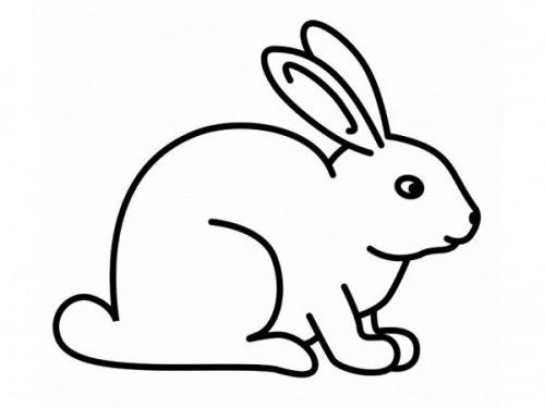 раскраска заяц17