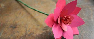объемные цветы из бумаги своими руками