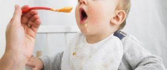 прикорм малыша в 5 месяцев
