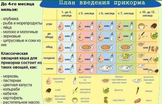 Схема прикорма с 4 месяцев