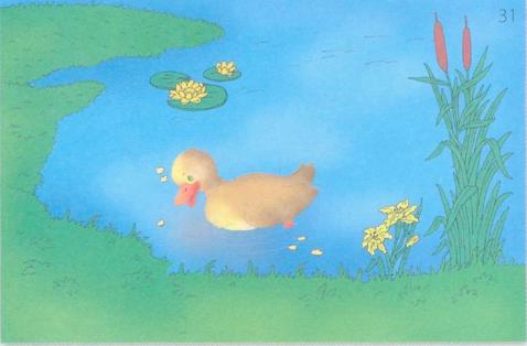 картинка с предлогом пруд 2