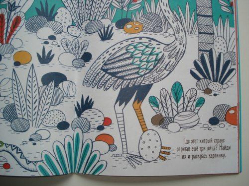 Разноцветные джунгли раскраска