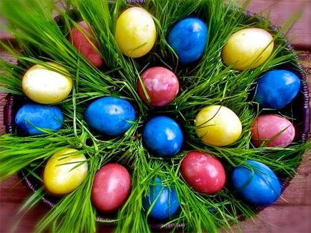 раскрашиваем яйца с детьми5