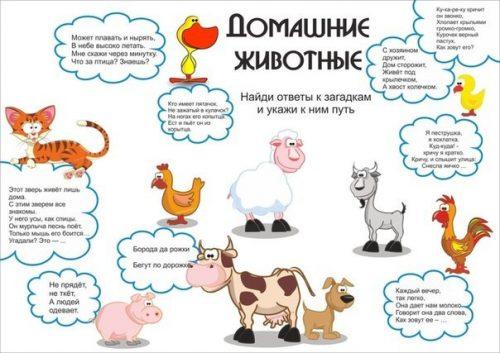 Загадки про животных для детей1