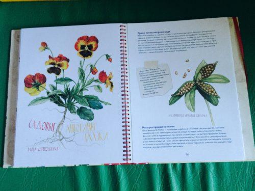 Волшебные цветы. Мой гербарий книга