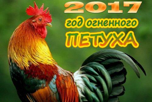 новый год 2017 петуха14