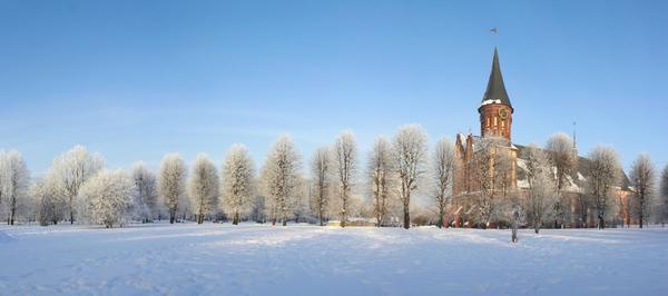 Калининград на Новый год