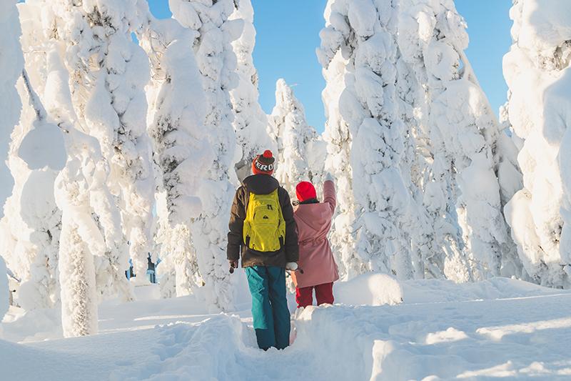 Лапландия зимой для детей